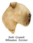 Soft-Coated Wheaten Terrier with this design
