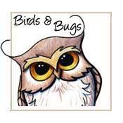 Bugs & Birds