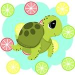Summertime Turtle