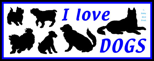 I LOVE DOGS T-SHIRTS