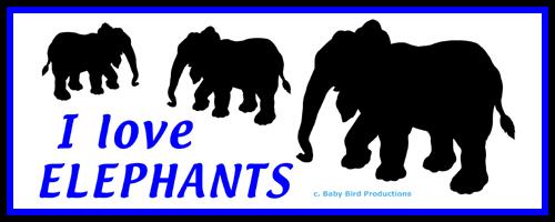 ELEPHANT T-SHIRTS & GIFTS