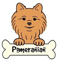 Personalized Pomeranian