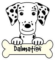 Personalized Dalmation