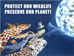 Conservation!