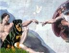 CREATION <br>& Rottweiler #3