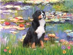 LILIES<br>& Bernese Mountain Dog