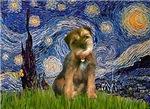 STARRY NIGHT<br> &  Border Terrier