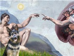 CREATION<br>& German Shepherd