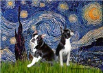 STARRY NIGHT<br>& 2 Boston Terrier