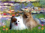 WATER LILIES<br>& 2 Pomeranians