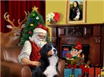 SANTA AT HOME<br>& Bernese Mountain Dog