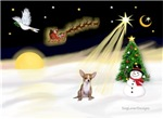NIGHT FLIGHT<br>& Chihuahua