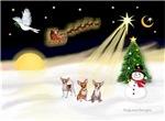 NIGHT FLIGHT<br>& 3 Chihuahuas