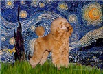 STARRY NIGHT<br>& Apricot Poodle (Toy/Min)