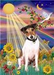 AUTUMN SUN<br>& Jack Russell Terrier