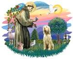 St. Francis #2 &<br>Italian Spinone