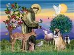 Saint Francis / Shar Pei (#5)