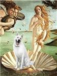 BIRTH OF VENUS<br>& a White German Shepherd
