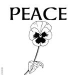 OYOOS Peace design