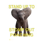 Stomp Out Poaching