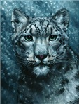 Snow Leopard Shirts & Jackets