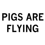 pigs are flying