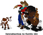 Horse Intro To Cattle