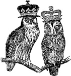 Owls With Crowns