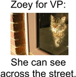 Zoey for VP T-shirts