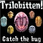 Trilobitten!