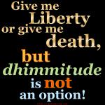 Dhimmi NO