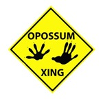Opossum Crossing