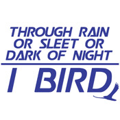 Through Rain or Sleet... I Bird