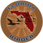 Florida Birder