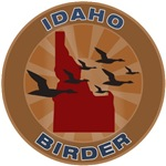 Idaho Birder