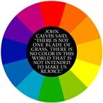 John Calvin-Color
