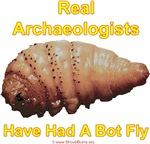 Real Archaeologists Have Had A Bot Fly