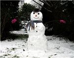 Happy Snowman - more gifts