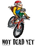 Not Dead Yet Mt Biker