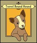 Happy Chihuahua Puppy