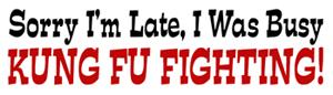 Kung Fu Fighting! t-shirts