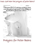 All Prayers For Polar Bears Apparel