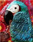 Pedro the Parrot