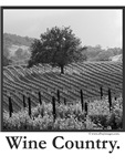 Wine Country T-Shirts +  Gifts