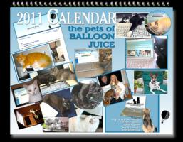 The Pets of Balloon Juice 2011 Calendar