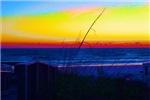 Coastal Tropical Landscape Dawn of a New Day Abstr