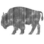 Buffalo (Black, Orange Options)