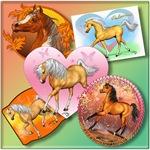Horses / Equine