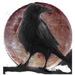 raven's designs