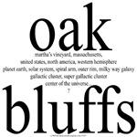 367. oak bluffs